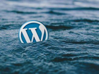 Come scrivere articolo su Wordpress, regole SEO, tema MH Edition. Nell'articolo, arricchito da videotutorial, si spiega anche uso degli shortcode